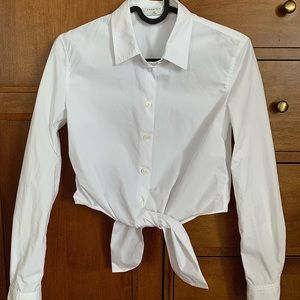 Babaton/Aritzia Tie front dress shirt